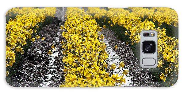 Rows Of Daffodils Galaxy Case