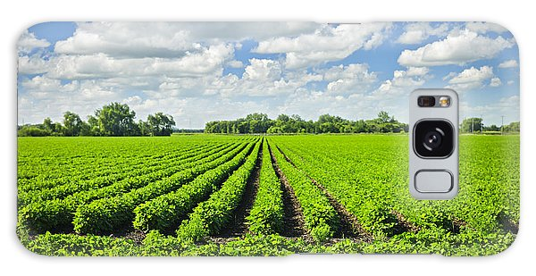 Rows Of Soy Plants In Field Galaxy Case