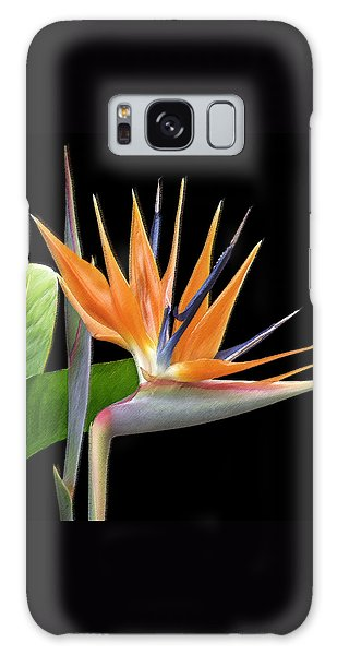 Royal Beauty I - Bird Of Paradise Galaxy Case by Ben and Raisa Gertsberg