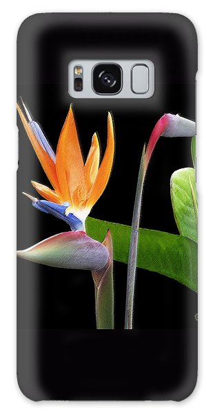 Royal Beauty II - Bird Of Paradise Galaxy Case by Ben and Raisa Gertsberg