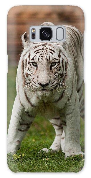 Royal Bengal Tiger Galaxy Case