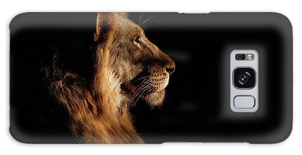 Lion Galaxy Case - Royal Meeting In The Night by Andreas Hemb