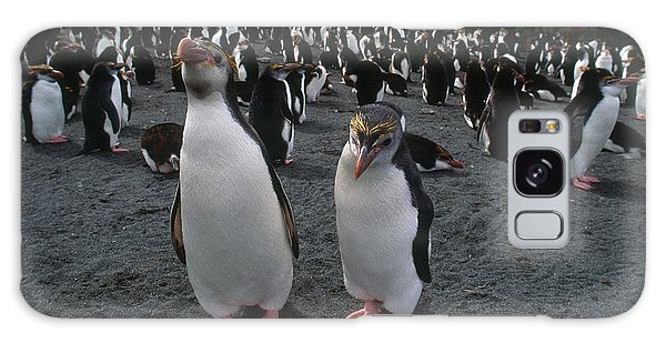 Royal Colony Galaxy Case - Royal Penguins by Art Wolfe