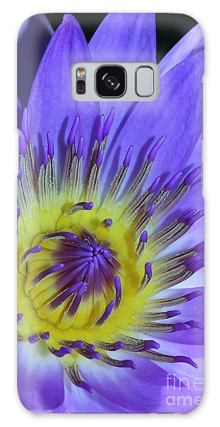 Royal Purple Water Lily #11 Galaxy Case