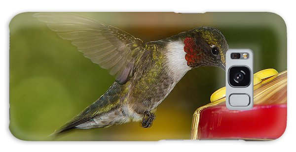 Ruby-throat Hummer Sipping Galaxy Case