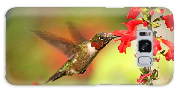 Ruby Throat Hummingbird Photo Galaxy Case