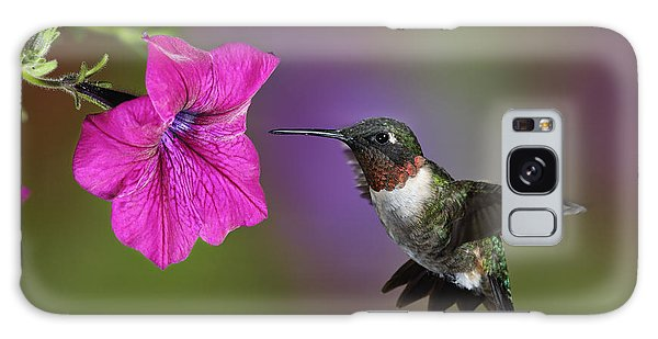 Ruby-throated Hummingbird - D004190 Galaxy Case