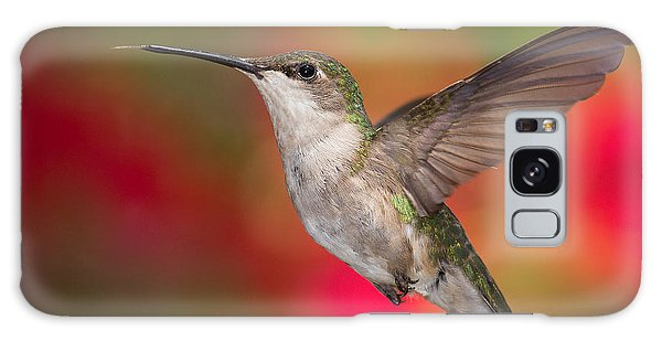 Ruby Throated Hummingbird Galaxy Case