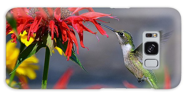 Ruby Throated Hummingbird In A Flower Garden Galaxy Case