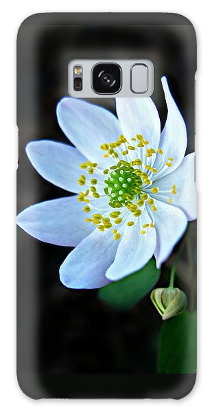 Rue Anemone Galaxy Case