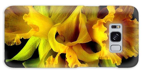 Ruffled Daffodils Galaxy Case