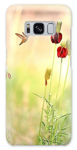 Rufous Hummingbird Mexican Hat Corn Flower Galaxy Case