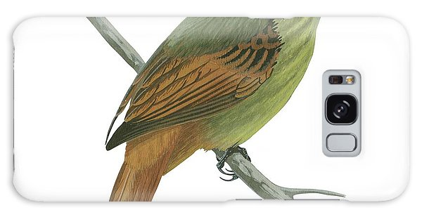 No-one Galaxy Case - Rufous Tailed Flatbill  by Anonymous