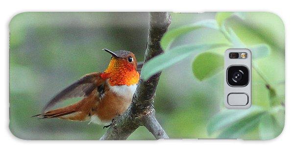 Rufus Hummingbird Galaxy Case