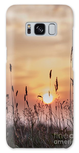 Rural Sunset Galaxy Case
