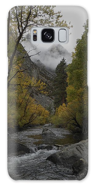 Rush Creek Aspen Trees Aerie Crag Galaxy Case