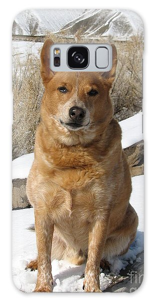 Rusty - Red Heeler Galaxy Case