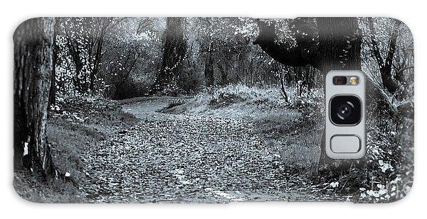 Sacramento River Walk At Turtle Bay Galaxy Case