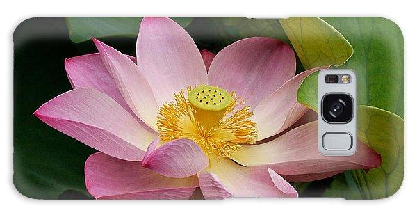 Sacred Lotus Galaxy Case