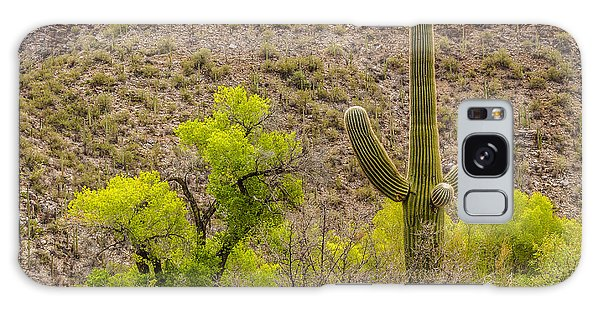 Galaxy Case featuring the photograph Saguaro And Cottonwood by Beverly Parks