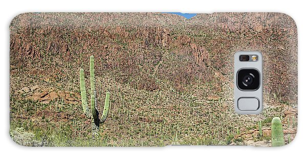 Desert Flora Galaxy Case - Saguaro Cactus And Desert Flora by Jim West/science Photo Library