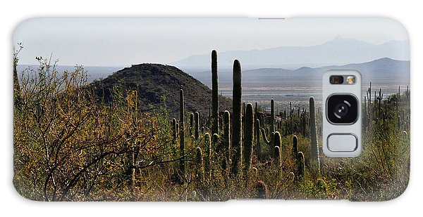 Saguaro Cactus And Valley Galaxy Case by Diane Lent