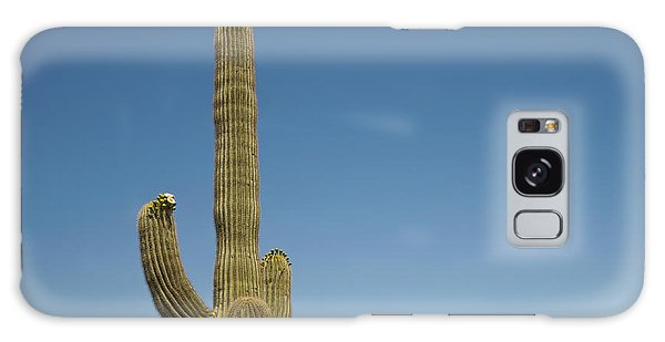 Saguaro Cactus In Bloom Galaxy Case by Marianne Campolongo