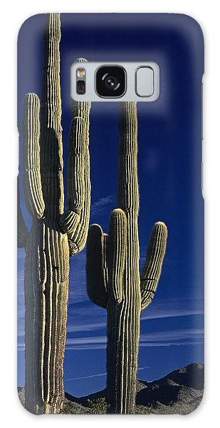 Saguaro Cactus Sunset Arizona State Usa Galaxy Case