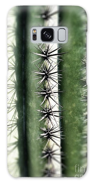 Saguaro Catus Needles Galaxy Case