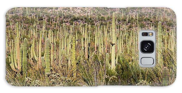 Saguaro Colony Galaxy Case