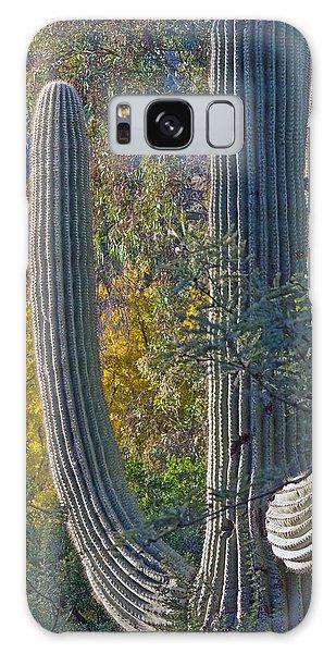 Saguaro Fall Color Galaxy Case