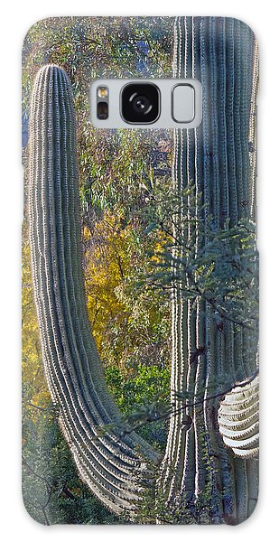 Saguaro Fall Color Galaxy Case by Tam Ryan