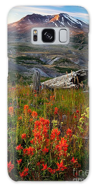 National Monument Galaxy Case - Saint Helens Paintbrushes by Inge Johnsson