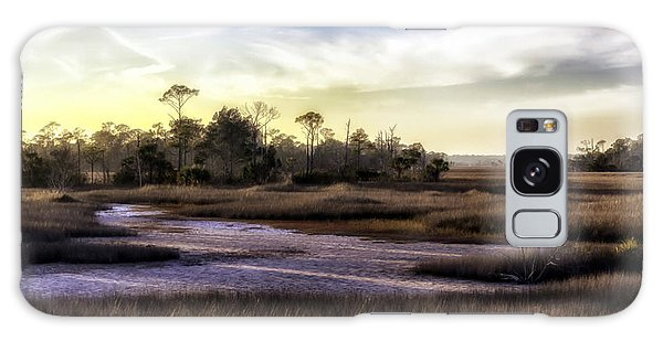 Saint Marks Wetland Sunset Galaxy Case by Lynn Palmer
