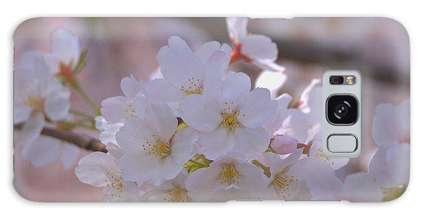 Sakura Galaxy Case by Rachel Mirror