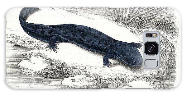 Salamanders Galaxy Case - Salamander by Collection Abecasis