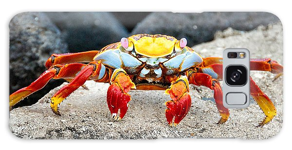 Sally Lightfoot Crab Galaxy Case by William Beuther