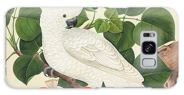 Cockatoo Galaxy S8 Case - Salmon-crested Cockatoo by Natural History Museum, London