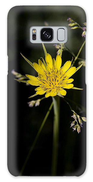 Salsify And Grass Galaxy Case