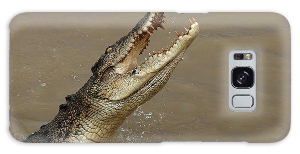 Salt Water Crocodile Australia Galaxy Case by Bob Christopher