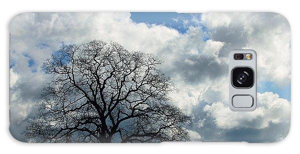 Same Tree Many Skies 13 Galaxy Case