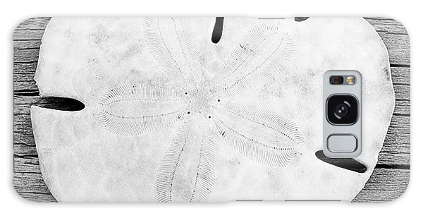 Sand Dollar Galaxy Case
