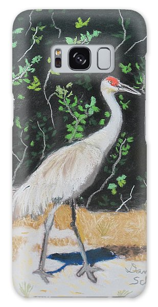 Sand Hill Crane Walking The Sands Of Seminole Forest Galaxy Case