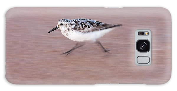Sanderling On The Run Galaxy Case