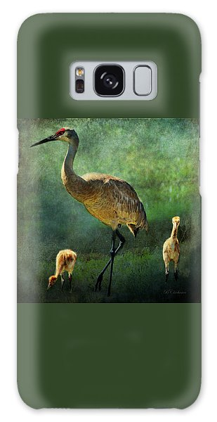 Sandhill And Chicks Galaxy Case by Barbara Chichester
