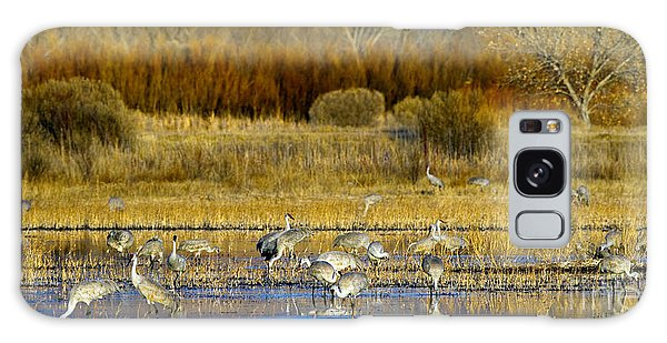 Sandhill Flock In Fall Galaxy Case