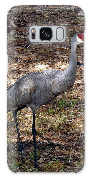 Sandhill Crane Portrait. Galaxy Case