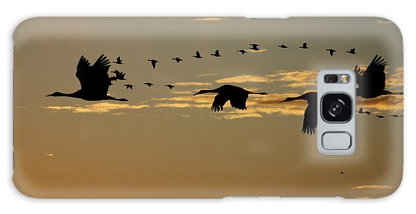 Sandhill Cranes At Sunset Galaxy Case
