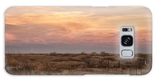 Sandhill Cranes At Sunset Galaxy Case