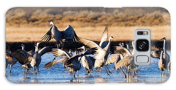 Cranes Dance For Joy Galaxy Case